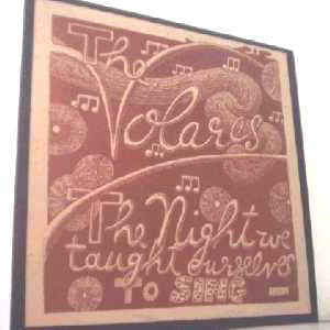 The Volares - The Night We Taught Ourselves To Sing LP Cover